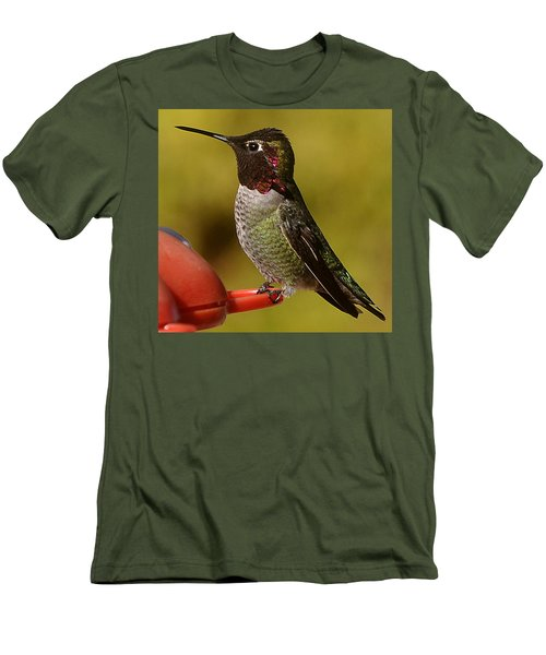 Hummingbird Male Allan Men's T-Shirt (Athletic Fit)