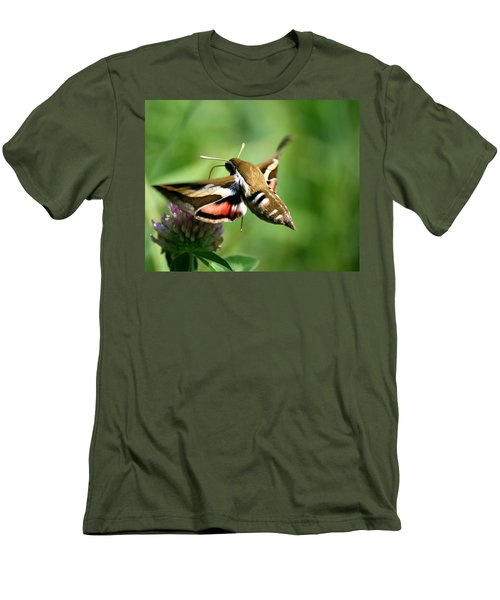 Hummingbird Moth From Behind Men's T-Shirt (Slim Fit)