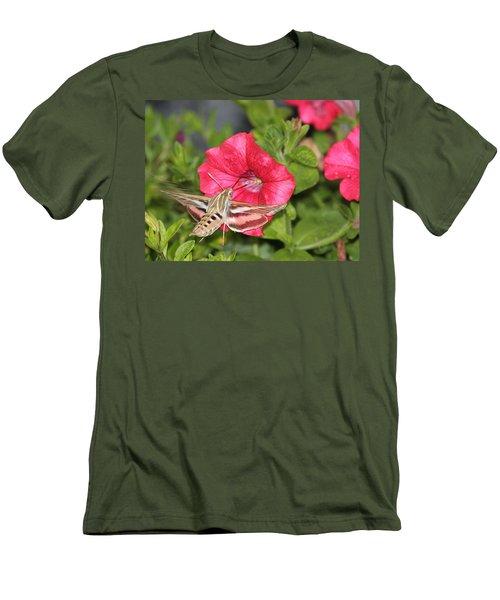 Hummingbird Moth Men's T-Shirt (Slim Fit) by Tiffany Erdman