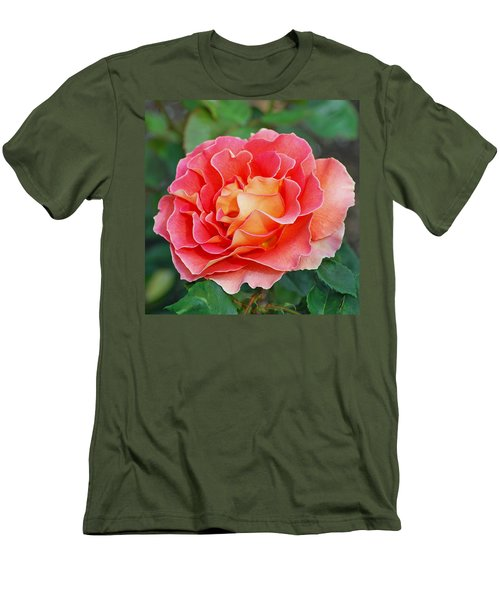 Hybrid Tea Rose  Men's T-Shirt (Athletic Fit)