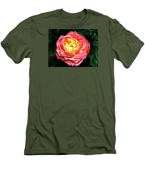 Men's T-Shirt (Slim Fit) featuring the photograph Hybrid Tea Rose ' Love And Peace ' by William Tanneberger