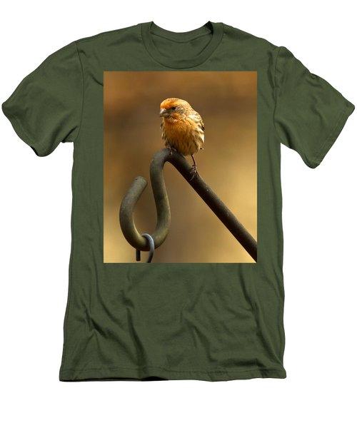 Men's T-Shirt (Slim Fit) featuring the photograph I'm Orange by Robert L Jackson