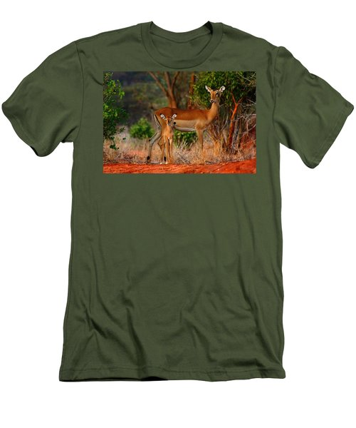 Impala And Young Men's T-Shirt (Slim Fit) by Amanda Stadther