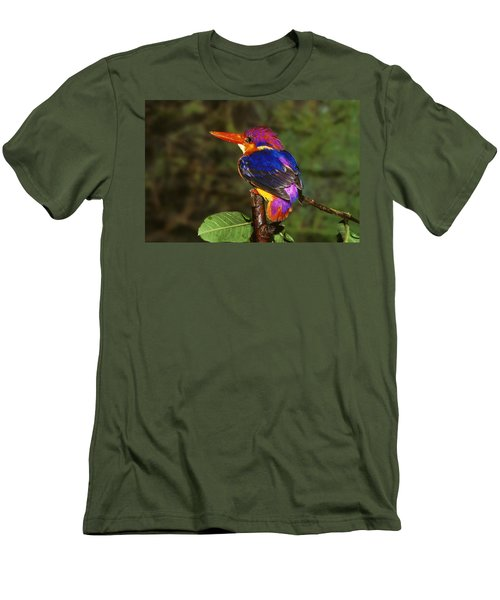 India Three Toed Kingfisher Men's T-Shirt (Slim Fit) by Anonymous