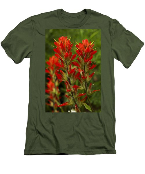 Indian Paintbrush Men's T-Shirt (Athletic Fit)