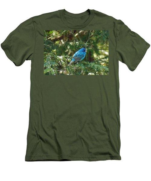 Indigo Bunting Visit Men's T-Shirt (Slim Fit) by Brenda Brown