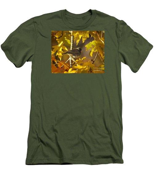 Junco In Morning Light Men's T-Shirt (Slim Fit) by Nava Thompson
