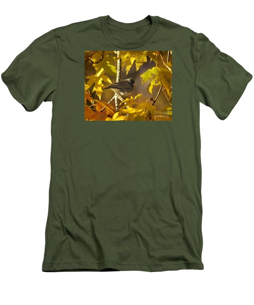 Junco In Morning Light Men's T-Shirt (Athletic Fit)