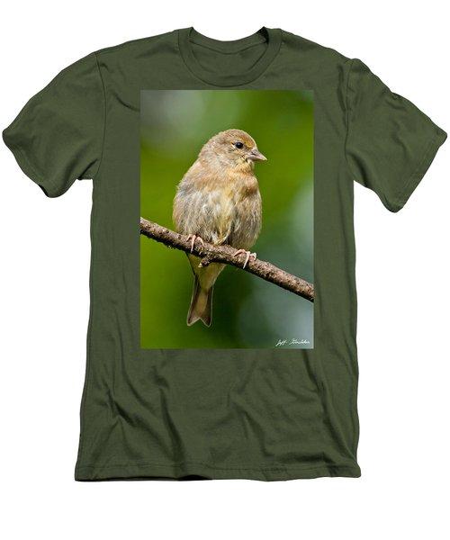 Juvenile American Goldfinch Men's T-Shirt (Athletic Fit)