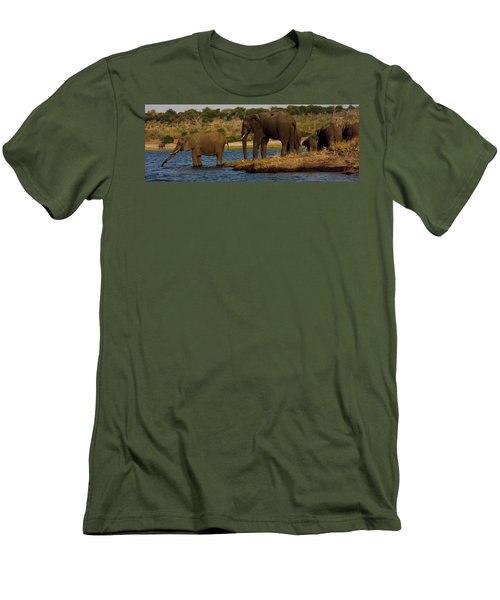 Men's T-Shirt (Slim Fit) featuring the photograph Kalahari Elephants Preparing To Cross Chobe River by Amanda Stadther