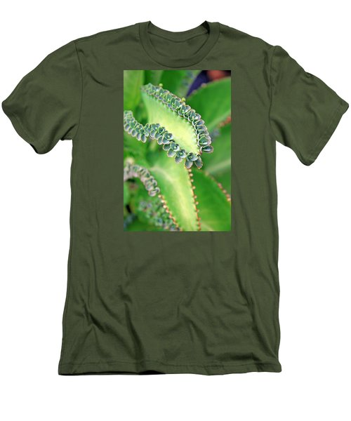 Kalanchoe Men's T-Shirt (Athletic Fit)