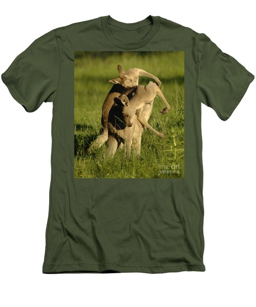 Kangaroos Taking A Bow Men's T-Shirt (Slim Fit) by Bob Christopher
