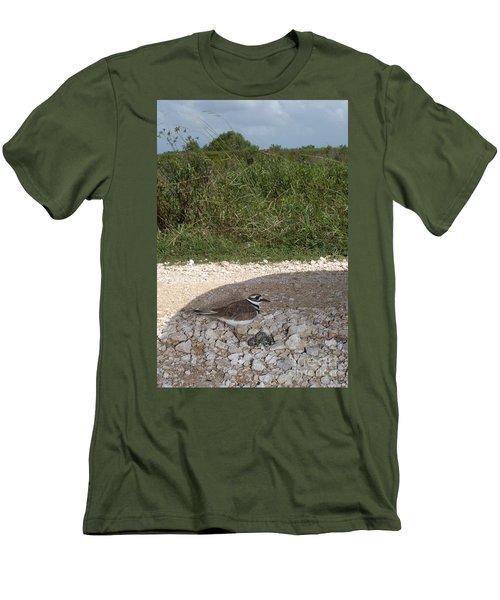 Killdeer Defending Nest Men's T-Shirt (Athletic Fit)