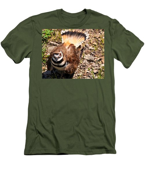 Killdeer On Its Nest Men's T-Shirt (Athletic Fit)