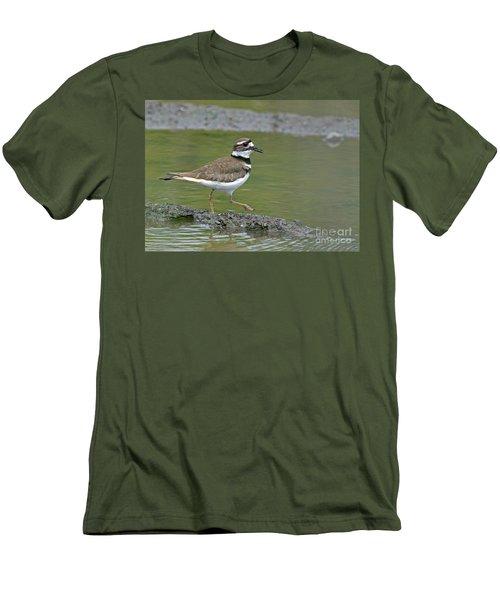 Killdeer Walking Men's T-Shirt (Athletic Fit)