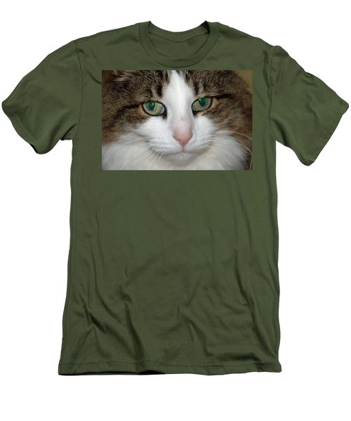 Men's T-Shirt (Slim Fit) featuring the photograph Kitty by Aimee L Maher Photography and Art Visit ALMGallerydotcom