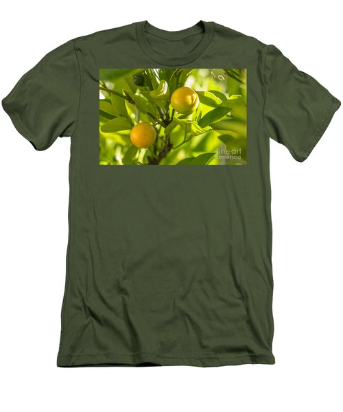 Kumquats Men's T-Shirt (Athletic Fit)