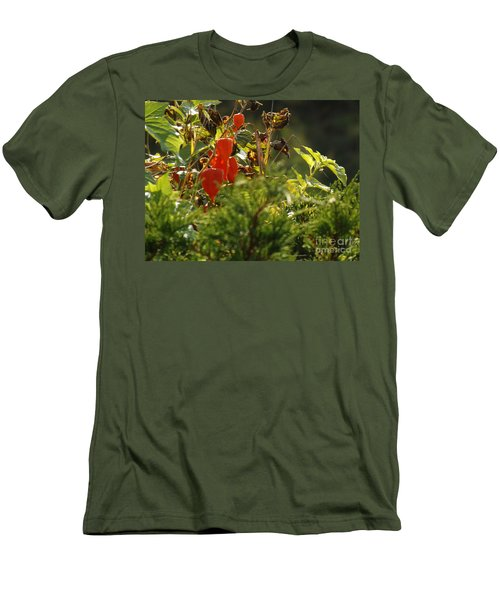 Men's T-Shirt (Slim Fit) featuring the photograph Lantern Plant by Brenda Brown