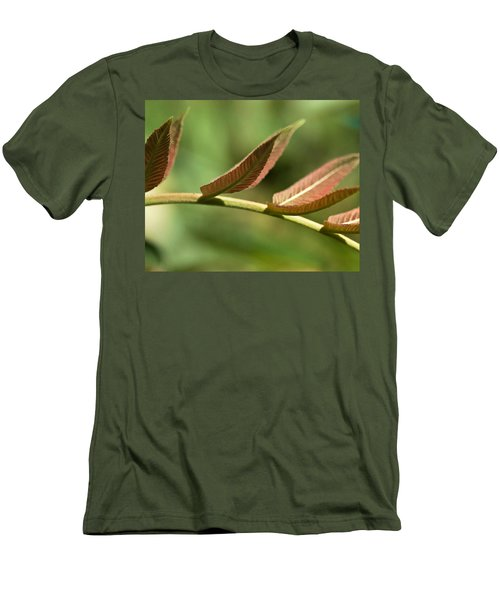 Leaf Bridge Men's T-Shirt (Athletic Fit)