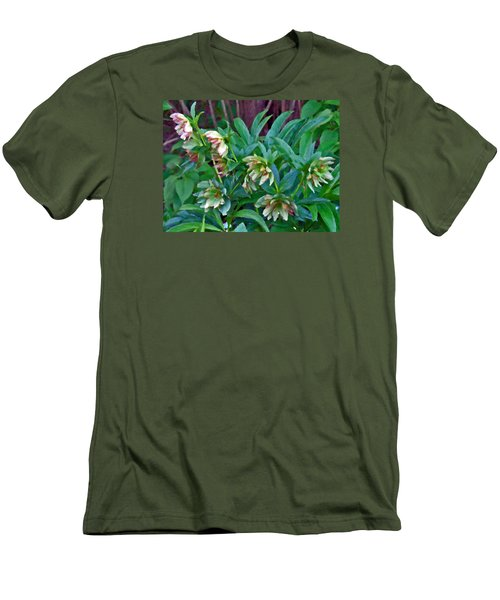 Lenten Roses Men's T-Shirt (Athletic Fit)