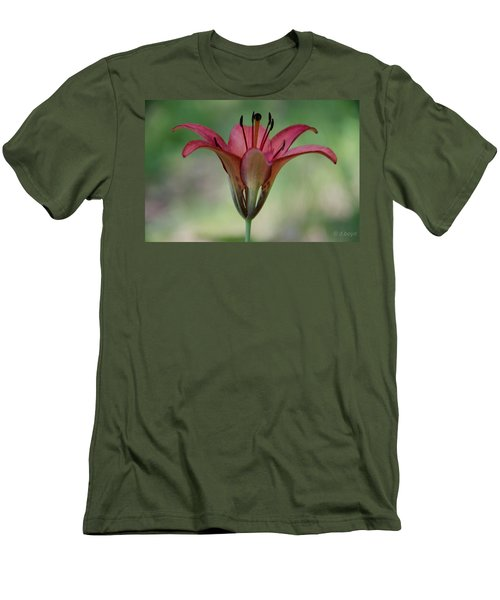 Lillium Philadelphicum Men's T-Shirt (Athletic Fit)