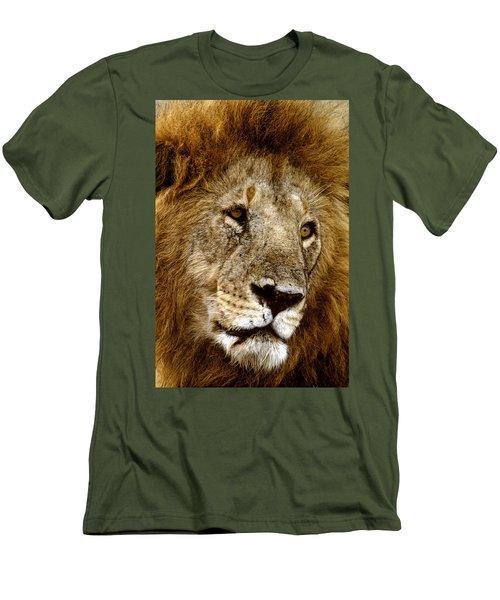Lion 01 Men's T-Shirt (Slim Fit) by Wally Hampton