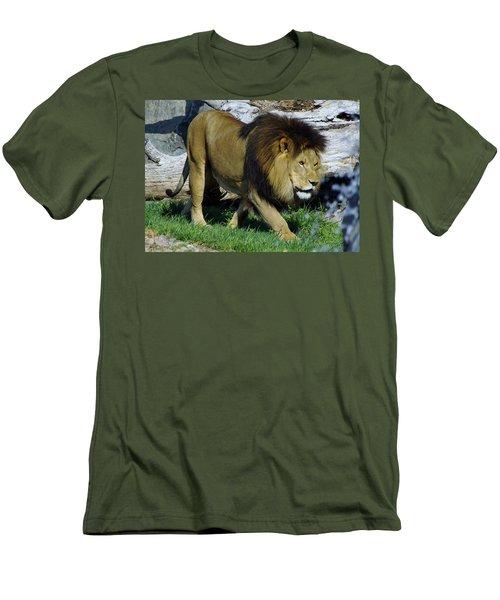 Lion 1 Men's T-Shirt (Athletic Fit)
