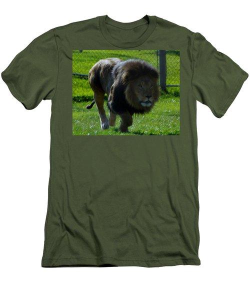 Lion 4 Men's T-Shirt (Athletic Fit)