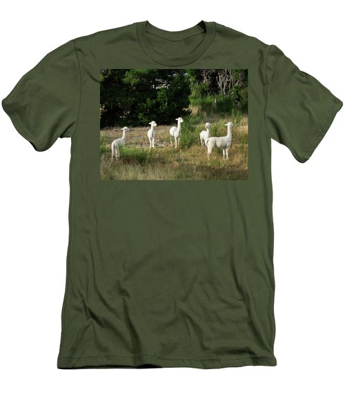 Llamas Standing In A Forest Men's T-Shirt (Slim Fit) by Panoramic Images