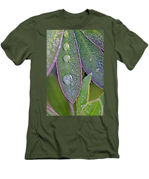 Lupin Leaves And Waterdrops Men's T-Shirt (Athletic Fit)