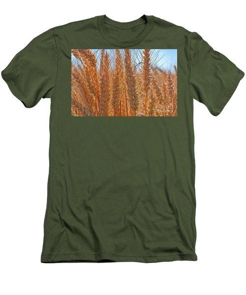 Macro Of Wheat Art Prints Men's T-Shirt (Slim Fit) by Valerie Garner
