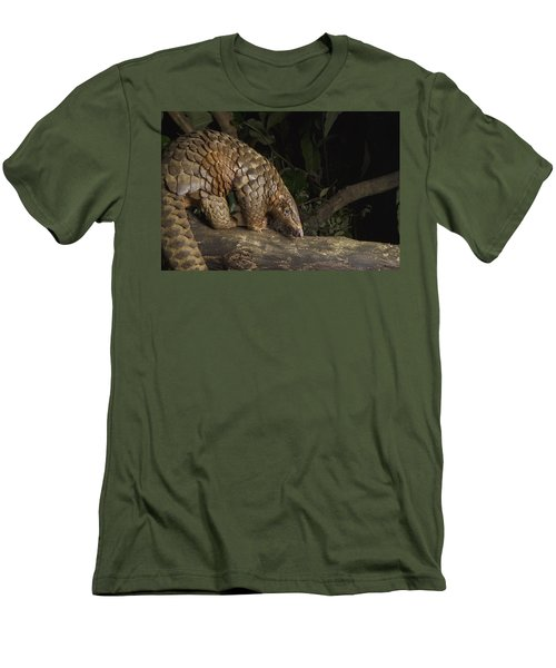 Malayan Pangolin Eating Ants Vietnam Men's T-Shirt (Athletic Fit)