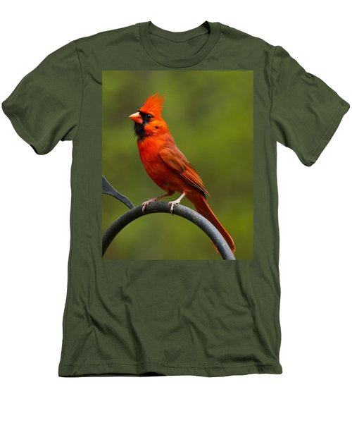 Men's T-Shirt (Slim Fit) featuring the photograph Male Cardinal by Robert L Jackson