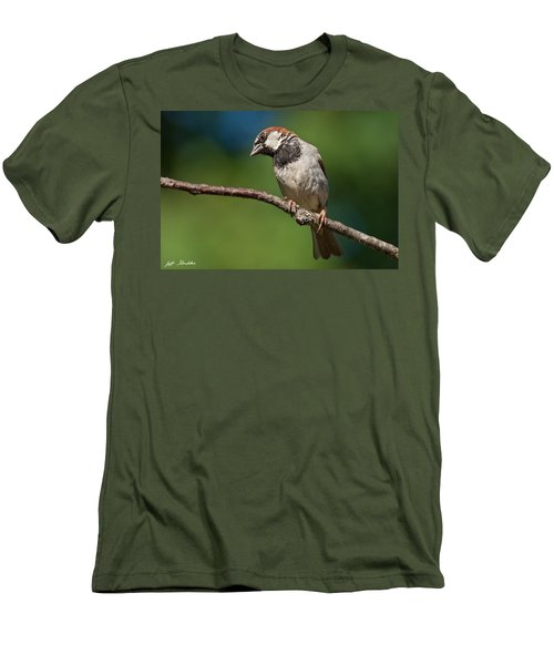Male House Sparrow Perched In A Tree Men's T-Shirt (Athletic Fit)