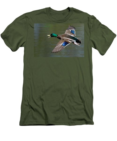 Men's T-Shirt (Slim Fit) featuring the photograph Mallard In Flight by Jerry Gammon