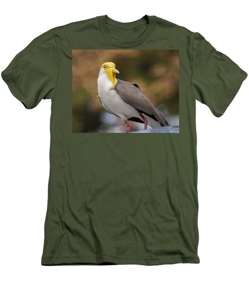Masked Lapwing Men's T-Shirt (Slim Fit) by Carolyn Marshall