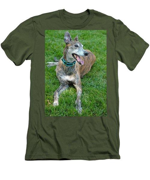 Men's T-Shirt (Slim Fit) featuring the photograph Maverick by Lisa Phillips