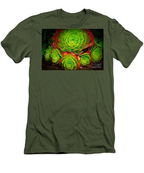 Morro Bay Echeveria Men's T-Shirt (Slim Fit) by Terry Garvin