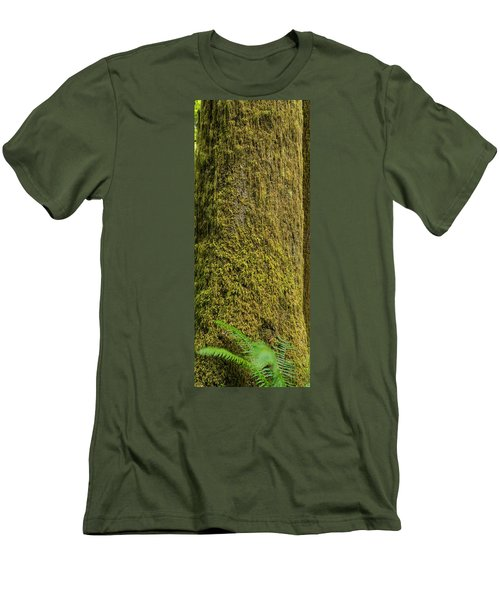 Moss Covered Tree Olympic National Park Men's T-Shirt (Slim Fit) by Steve Gadomski