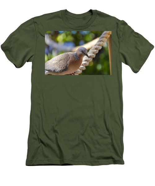 Mourning Dove Men's T-Shirt (Athletic Fit)