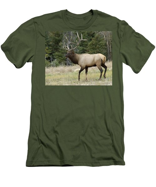 Mr Majestic Men's T-Shirt (Athletic Fit)