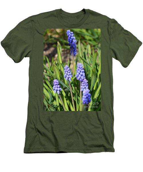 Muscari Armeniacum Men's T-Shirt (Slim Fit) by Felicia Tica