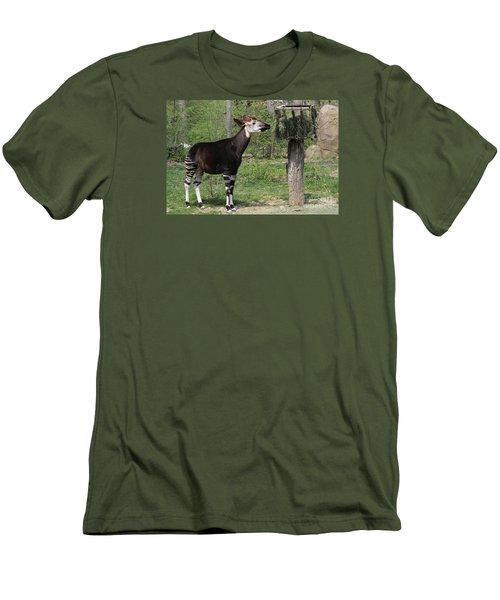 Okapi Men's T-Shirt (Slim Fit) by Judy Whitton
