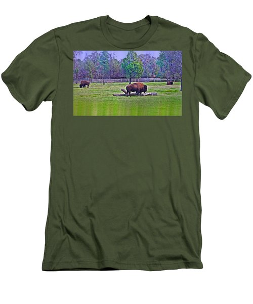 One Bison Family Men's T-Shirt (Athletic Fit)