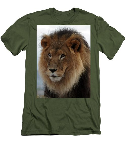 Out Ofafrica  Lion 4 Men's T-Shirt (Athletic Fit)