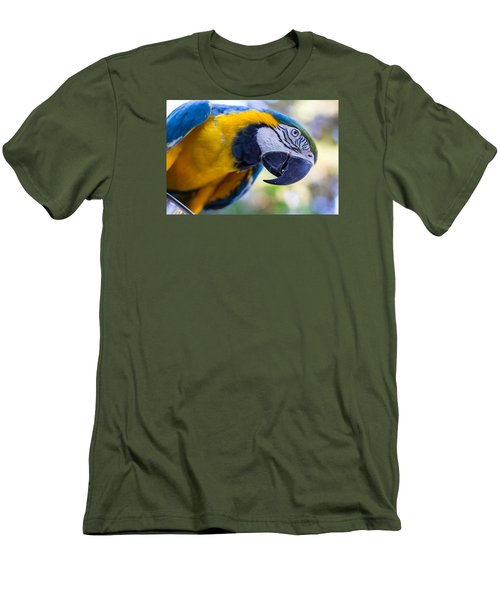 Parrot Men's T-Shirt (Athletic Fit)