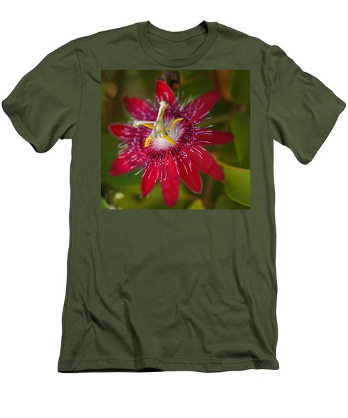 Men's T-Shirt (Slim Fit) featuring the photograph Passion Flower by Jane Luxton