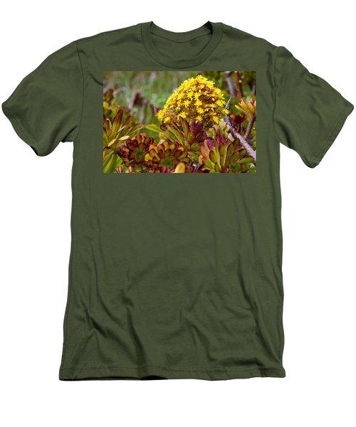 Petal Dome Men's T-Shirt (Slim Fit) by Melinda Ledsome