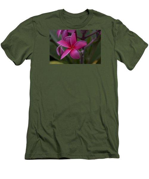 Plumeria Men's T-Shirt (Athletic Fit)