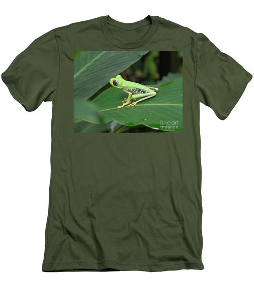 Poison Dart Frog Men's T-Shirt (Slim Fit) by DejaVu Designs
